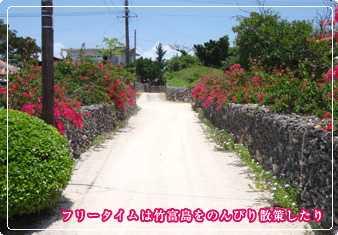 竹富島シュノーケリング
