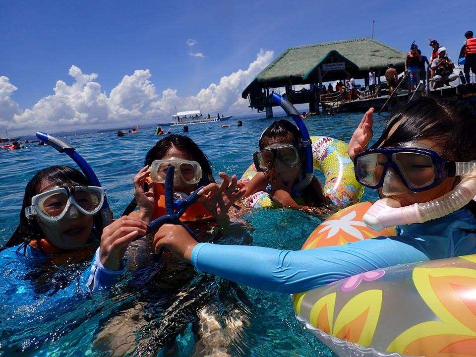 セブ島ダイビング ショップ