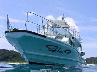 自社ダイビング専用ボート「フラップ号」のご紹介