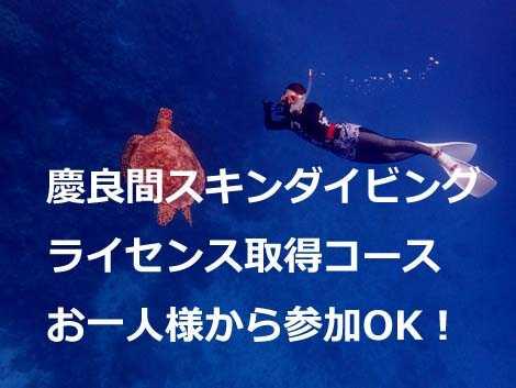 慶良間スノーケリングツアー