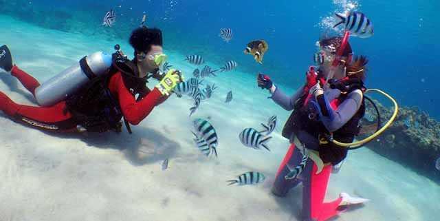 沖縄ケラマで初心者ダイビング・安心、リハビリ、ブランクOK